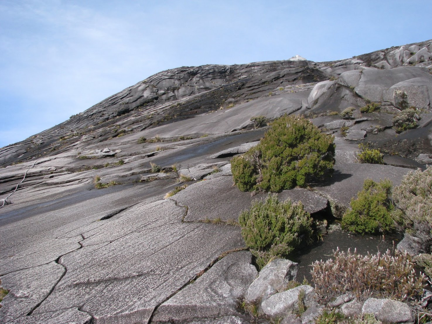 Kinabalu's final ascent, submitted by Sarabjit Singh